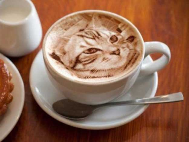 cafea-6