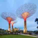 Șase dintre cele mai frumoase grădini ale lumii