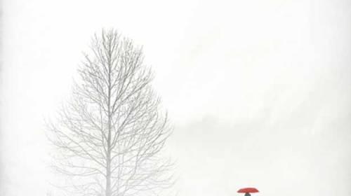 Port în mine albul iernilor neninse