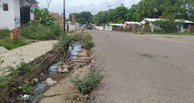 Redes colapsadas en la calle principal de Paural I
