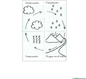 Ciclo del agua para niños
