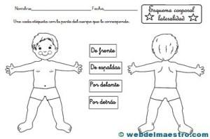 Esquema corporal-4