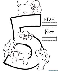 Five-pauta doble