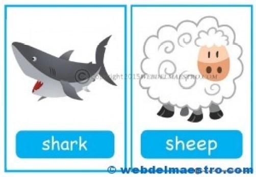 Animales en inglés-1