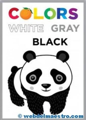 WHITE-GRAY-BLACK