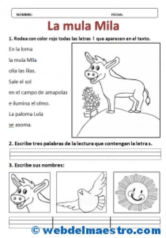 Lecturas-Puente infantil-primaria-Actividades