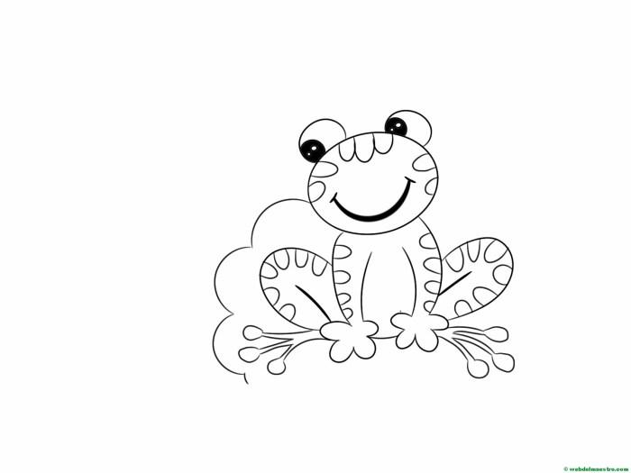 dibujar-paso-a-paso-rana-24