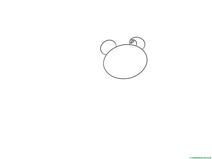 dibujar-paso-a-paso-rana-7