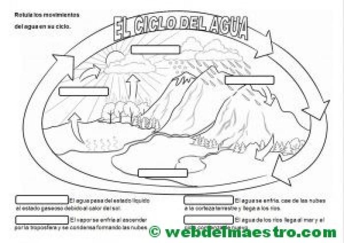 el-ciclo-del-agua-actividades