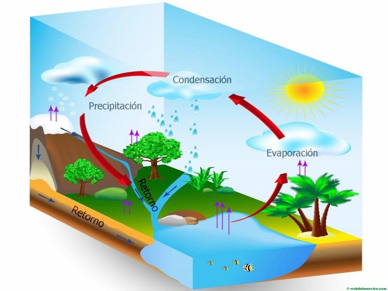 Nuestro rinconcito del agua.: CICLO Y TIPOS DE AGUA