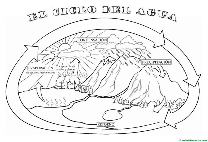 El Ciclo Del Agua Primaria Web Del Maestro