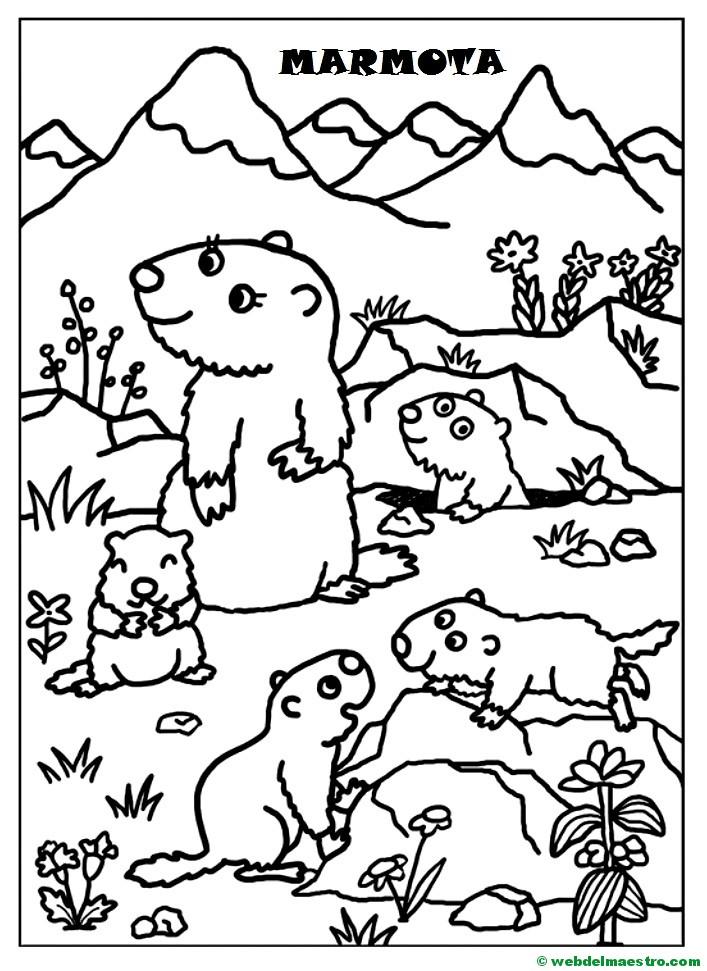 Marmota y sus crías - Web del maestro