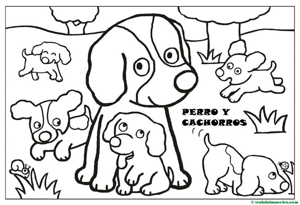 Dibujos para pintar  Animales y sus cras  Web del maestro