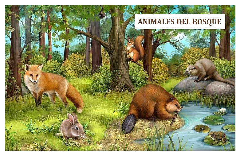 Animales Para Decorar Paredes