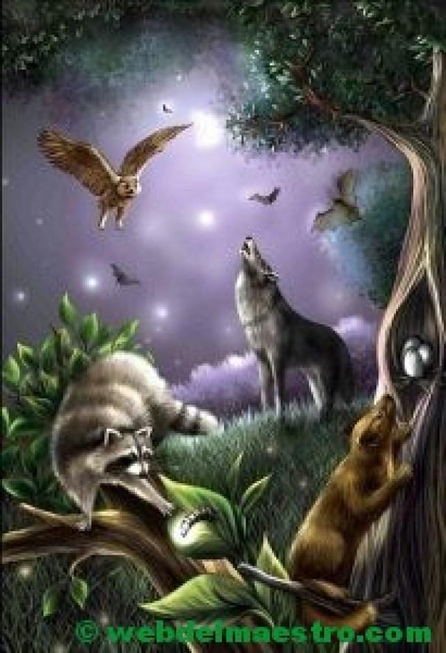 Animales salvajes nocturnos