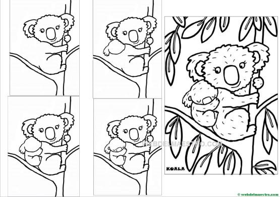 Como dibujar un koala para descargar e imprimir-2