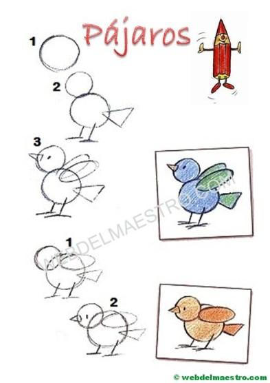 Cómo dibujar animales-pájaros