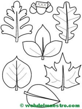 hojas de otoño y bellotas