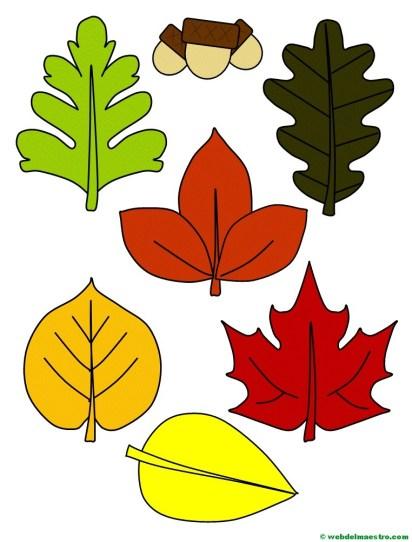hojas de otoño y bellotas-color