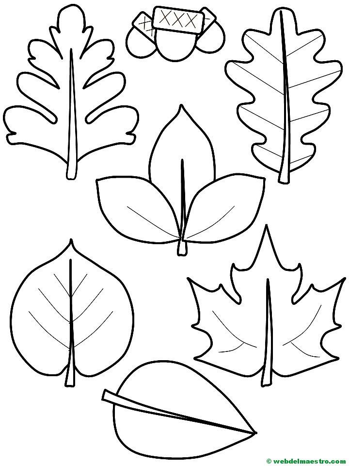 hojas de otoño y bellotas - Web del maestro