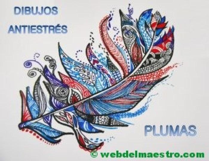 Dibujos antiestrés de plumas- Terminación color