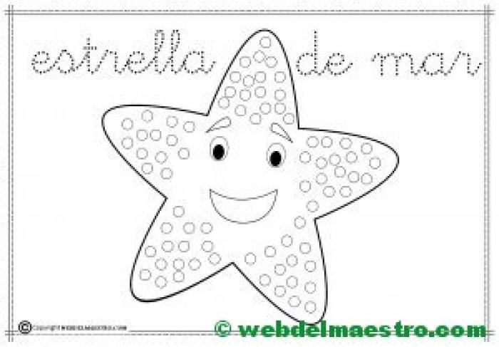 1-Estrella de mar