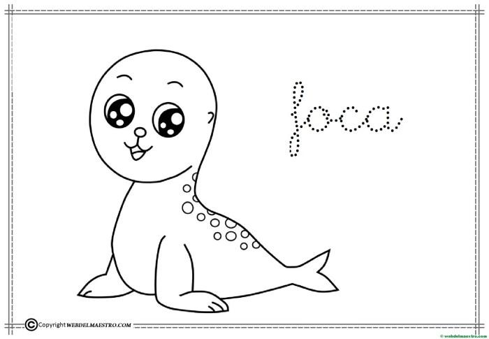 16-foca