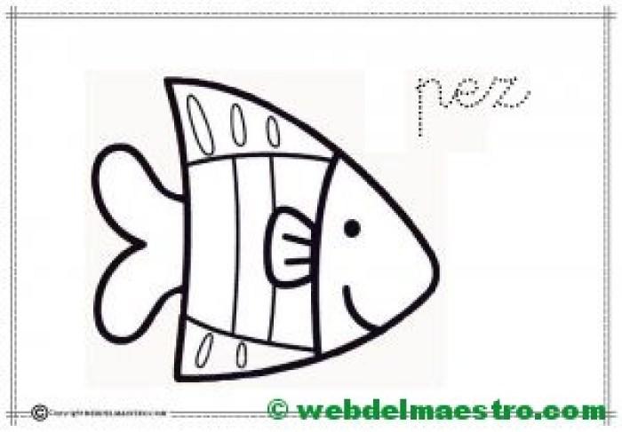 17-pez