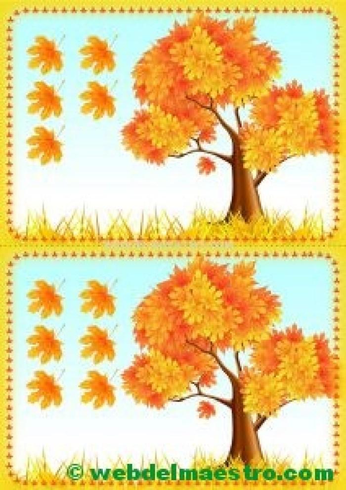 árboles de otoño 5-6