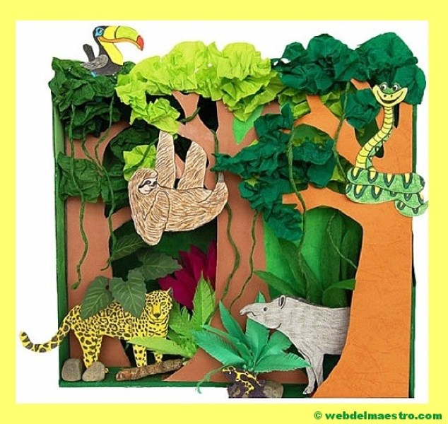 Ecosistema-la selva-II
