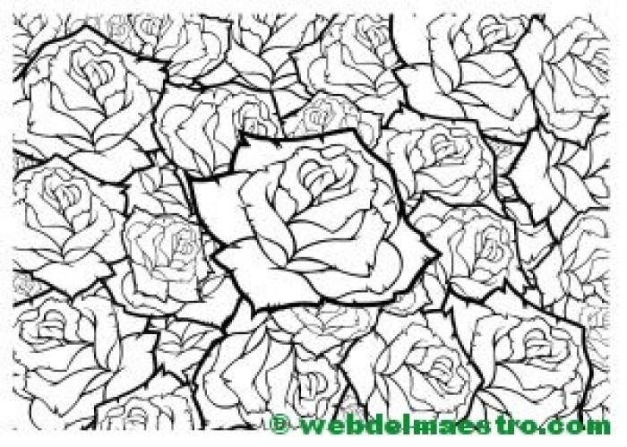 Dibujo de rosas