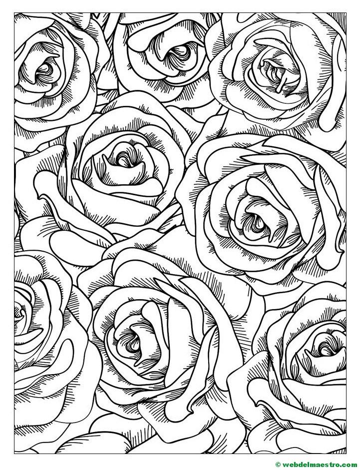 Rosas Para Colorear 4 Web Del Maestro