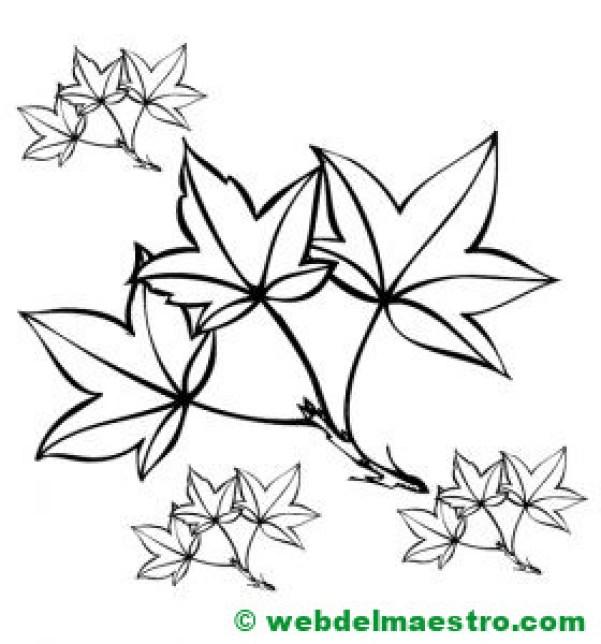hojas de otoño para colorear---