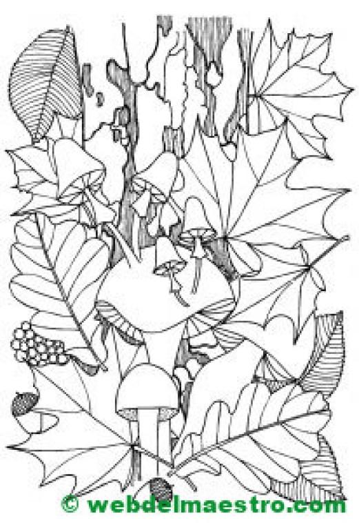 otoño dibujo--