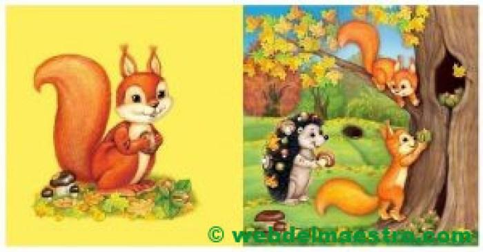 Ardilla - Bosque de otoño