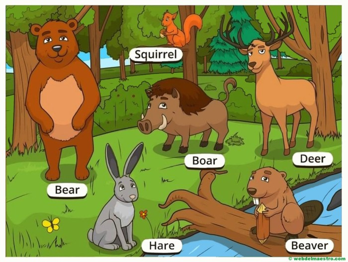 animales del bosque en ingles-II