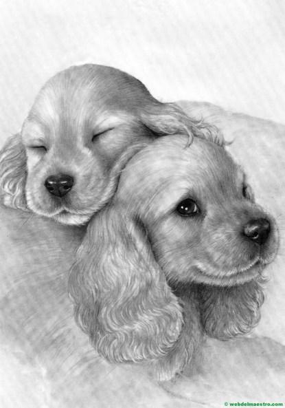 perritos dibujados a lápiz