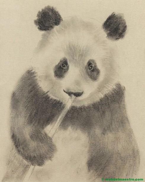 Dibujo a lápiz de oso panda-