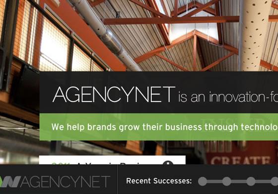 AgencyNet web design