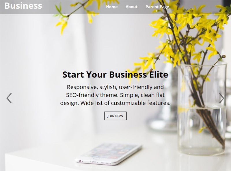 Business - one of 20 free wordpress themes for business consultants