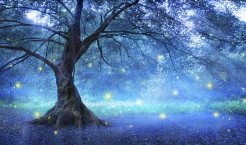 Lonely tree with mist and fireflies in forest