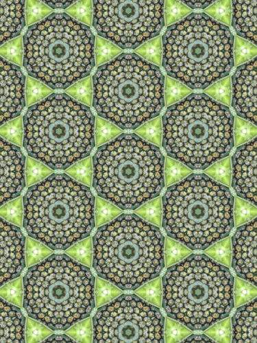 Abstract kaleidoscopic texture or background pattern design made from pineapple