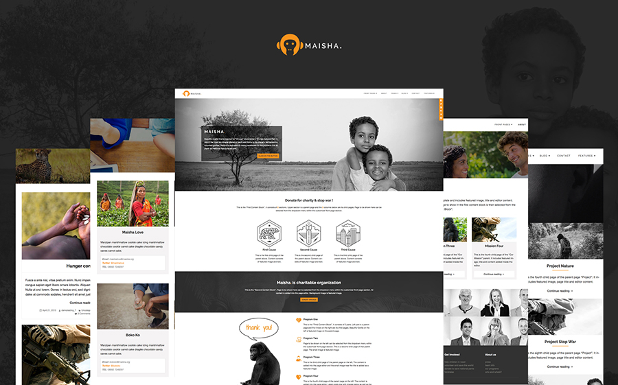 Charity/Non-Profit WordPress Theme