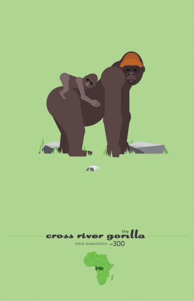 Cross River Gorilla Poster