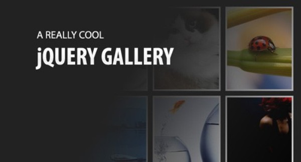Making a Really Cool jQuery Gallery