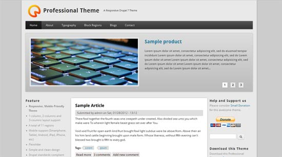 Professional-Theme