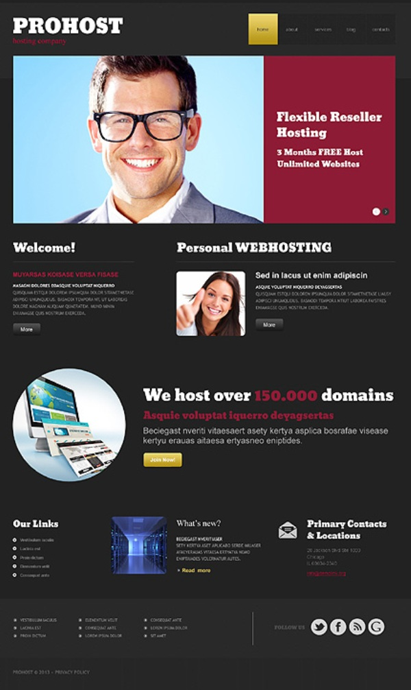 Professional Hosting Responsive WordPress Template