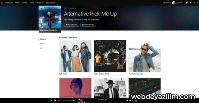 ReverbNation - Müzik İndirme Sitesi
