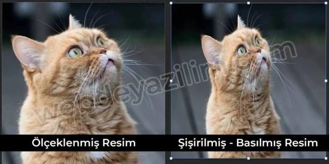 Photoshop - şişirilmiş görsel vs ölçeklenmiş görsel