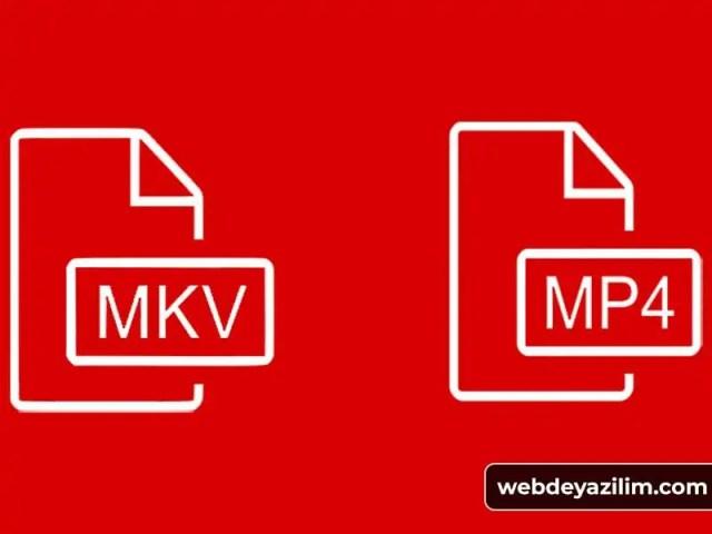 mkv mp4